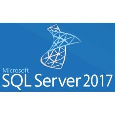 SQL Server 2017 Standard - por CORE MICROSOFT 7NQ-01183, Open Gobierno, 1 licencia, Windows